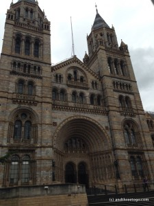 The Natural History Museum in London. I have never seen a more beautifully built museum.